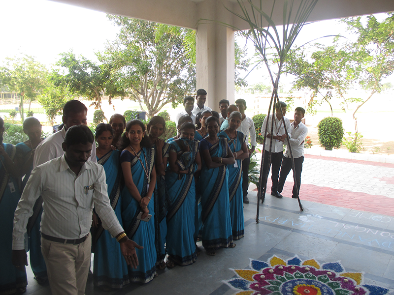 Pongal Day Celebrations